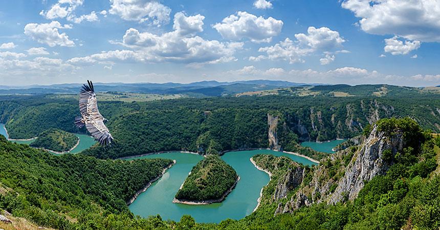 Organizacija boravka u Srbiji